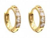 C-B18.1 E015-002G S. Steel Earrings with Zirconia 12mm Gold