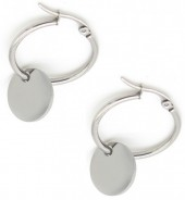 D-E19.2 E015-012 Stainless Steel Creoles 2.5cm with Coin Silver