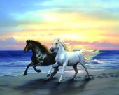 R-A2.1 X053 Diamond Painting Set Horses 40x30cm