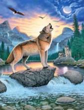 Q-D6.2  FZX208 Diamond Painting Set Wolf Square Stones 50x40cm