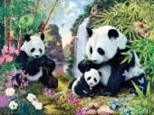 R-N3.2 S296 Diamond Painting Set Pandas 50x40cm