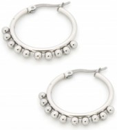 E126-004 Stainless Steel Earrings Drops 20mm Silver