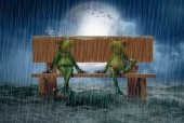 R-M7.1 Diamond Painting Set Frogs Rain 50x40cm