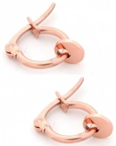 B-A17.2 E015-012S Stainless Steel Earrings with Coin 14mm Rose Gold