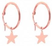B-C4.4 E015-012SA Stainless Steel Earrings 25MM Star Rose Gold