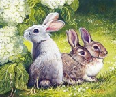 R-D6.1 Q101 Diamond Painting Set Rabbits 30x20cm Round