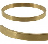 F-C3.2  Stainless Steel Bangle 6x5cm B005-002 Gold With Clovers