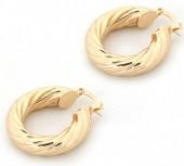 A-E20.1  E002-009 Stylish Metal Earrings Gold