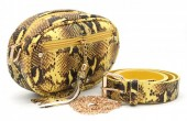 T-G2.1  BAG212-006 PU Snakeskin Combination Bag incl Belt Yellow
