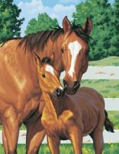 R-N2.1 Q076 Diamond Painting Set Horses 30x20cm