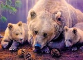 Y-A4.5 RA3227 Paint By Number Set Bearr with Cubs 40x30cm
