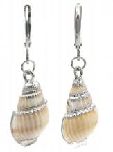 E-B4.4  E2121-040S S. Steel Earrings Shell 1x3cm Silver