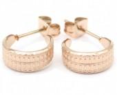 A-C6.3 E001-034RG Stainless Steel Earrings 1cm Rose Gold