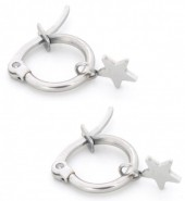 A-A17.2 E015-012S Stainless Steel Earrings with Star 14mm Silver