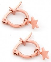 B-F16.5  E015-012S Stainless Steel Earrings with Star 14mm Rose Gold