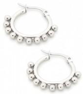 E126-004 Stainless Steel Earrings Drops 15mm Silver
