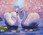 Y-D1.4 MS9265 Paint By Number Set Swans 50x40cm