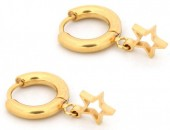 A-F5.4  E1842-005 Stainless Steel Earrings Star Gold  1x2cm