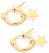 C-E17.3 E015-012S Stainless Steel Earrings with Star 14mm Gold
